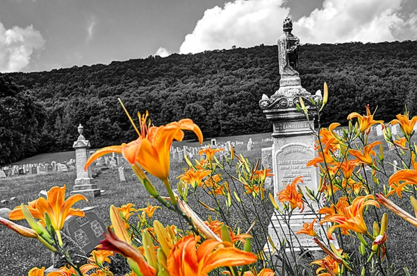 Day Lillies in the Graveyard.jpg
