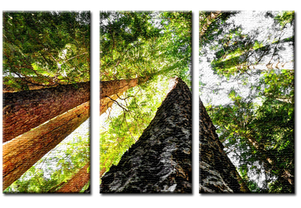 Up (Triptych).png