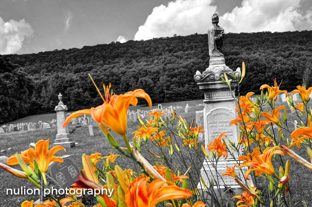 Day-Lillies-in-the-Graveyard