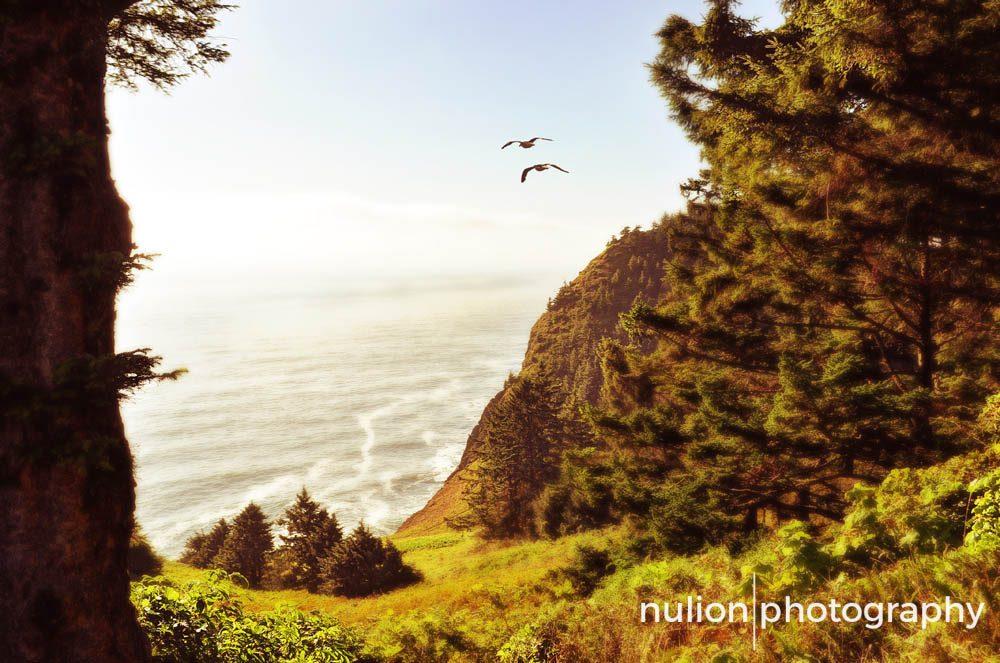 Oregonian-Dream